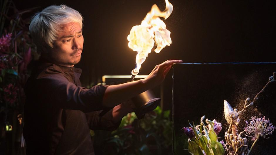 Select World: Azuma Makoto bildet Blumen in Eis