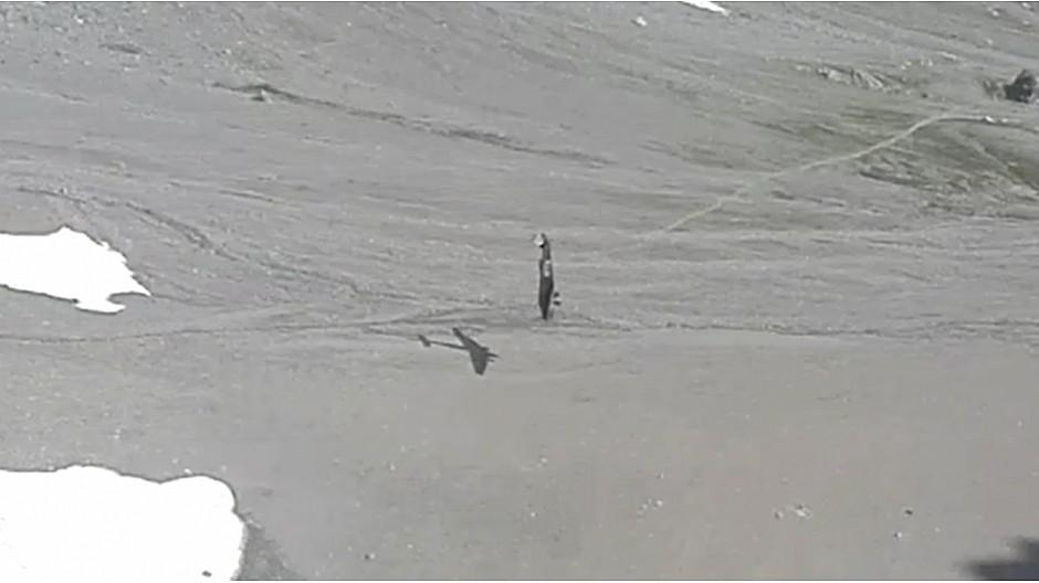 Ringier: «Blick» publiziert Video von Ju-52-Absturz