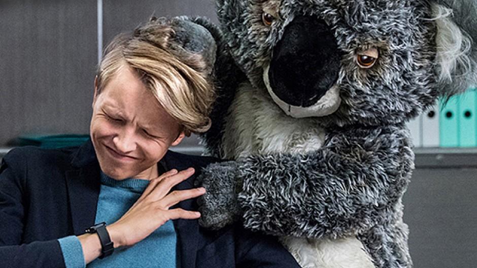 Y&R Group Switzerland: Der Plüsch-Koala als Spielverderber