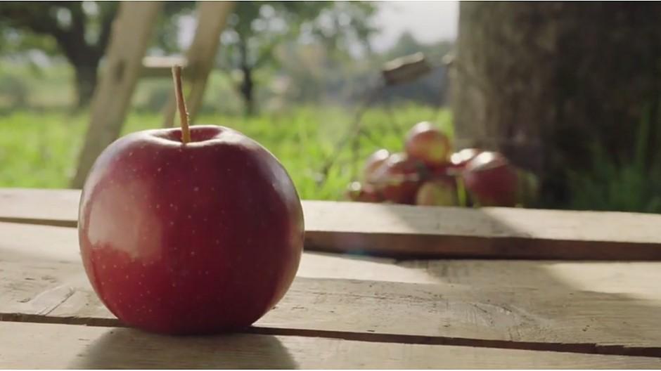 Agro-Marketing Suisse: Die inneren Werte der Schweizer Lebensmittel
