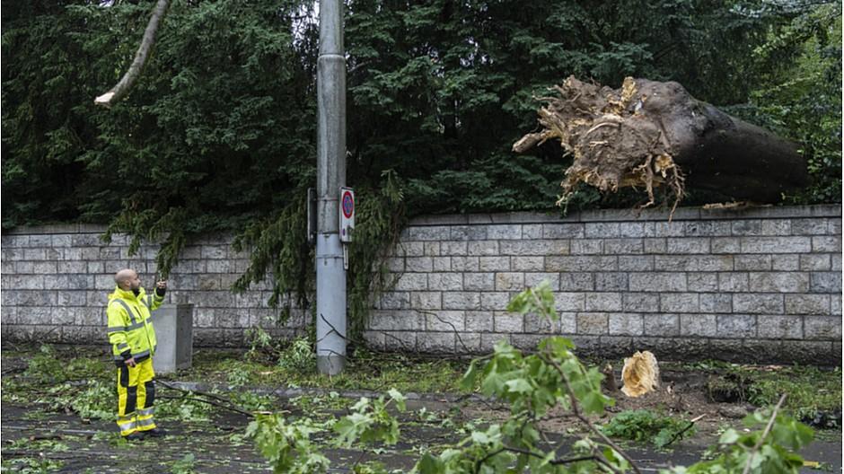 Unwetter: Entwurzelte Bäume und überflutete Strassen