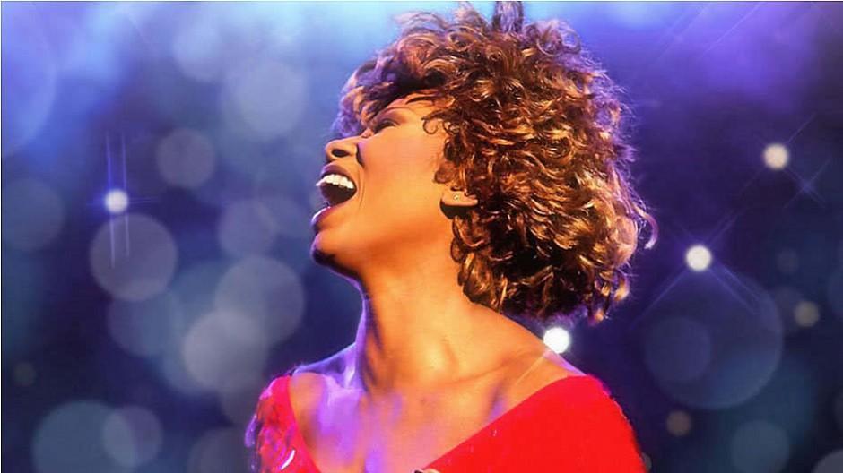 Verwechslungsgefahr: Gericht verbietet Tina-Turner-Plakat