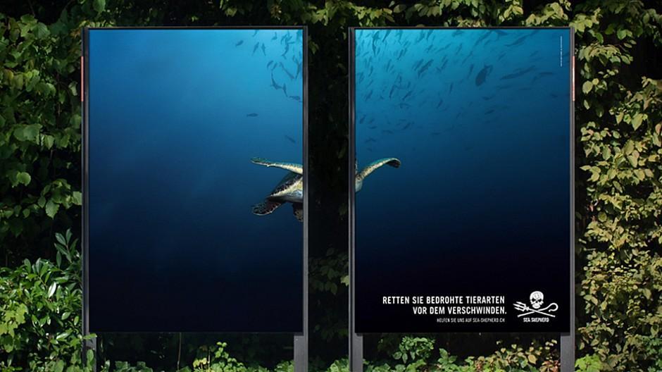 Serviceplan: Meerestiere zum Verschwinden gebracht