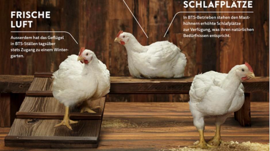 Urteil: Pouletfleischwerbung nur teilweise «irreführend»