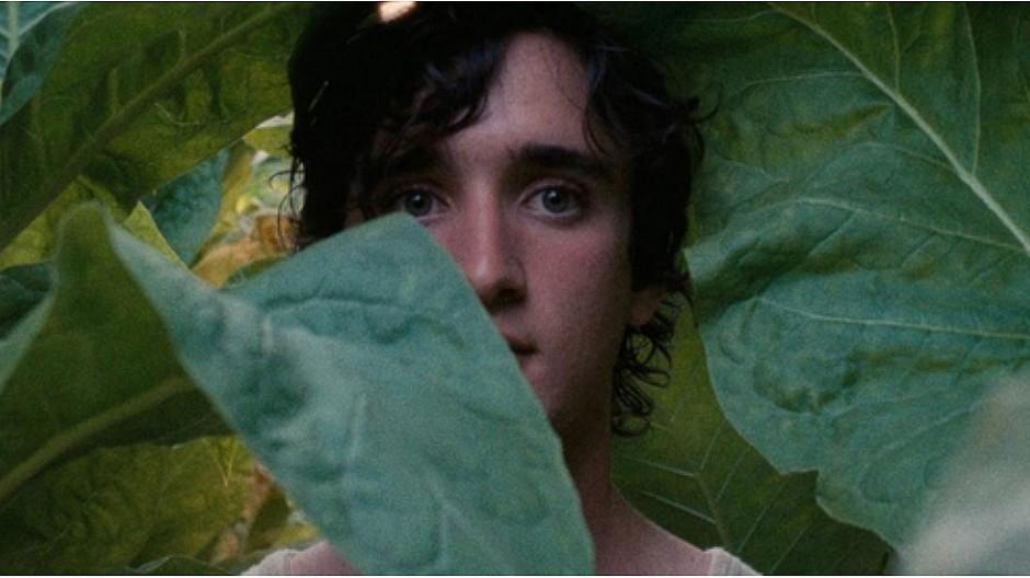Internationales Filmfestival in Cannes: Vier Koproduktionen der SRG im Programm