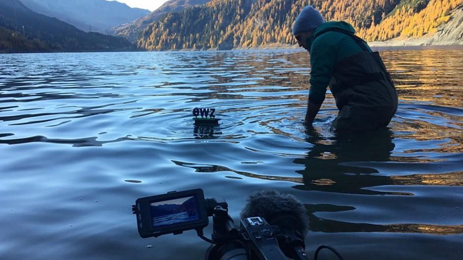 Halsundbeinbruch Film: Wenn das Firmenlogo schwimmen geht