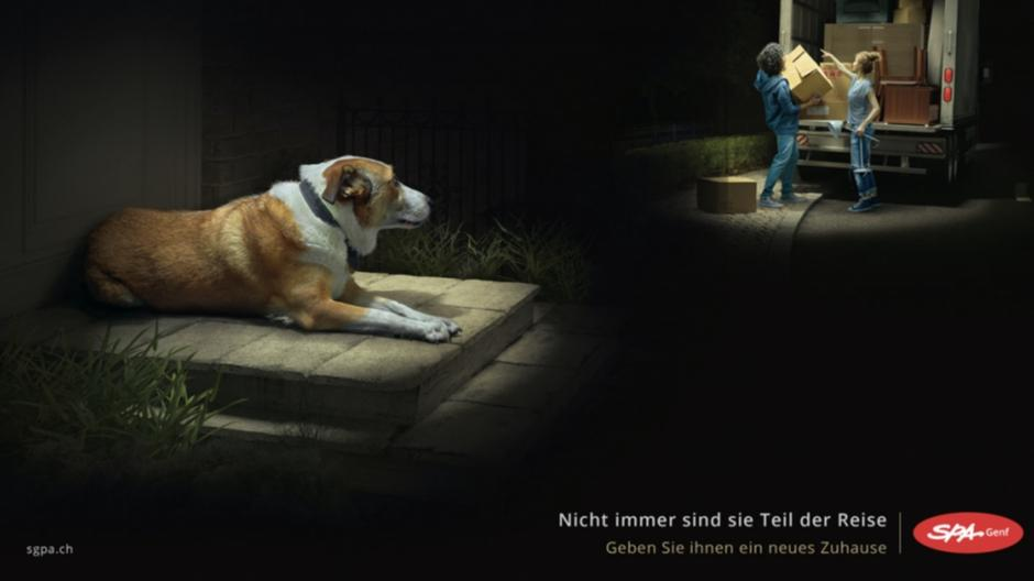 Havas Worldwide Genève: Wenn die Tiere vergessen gehen