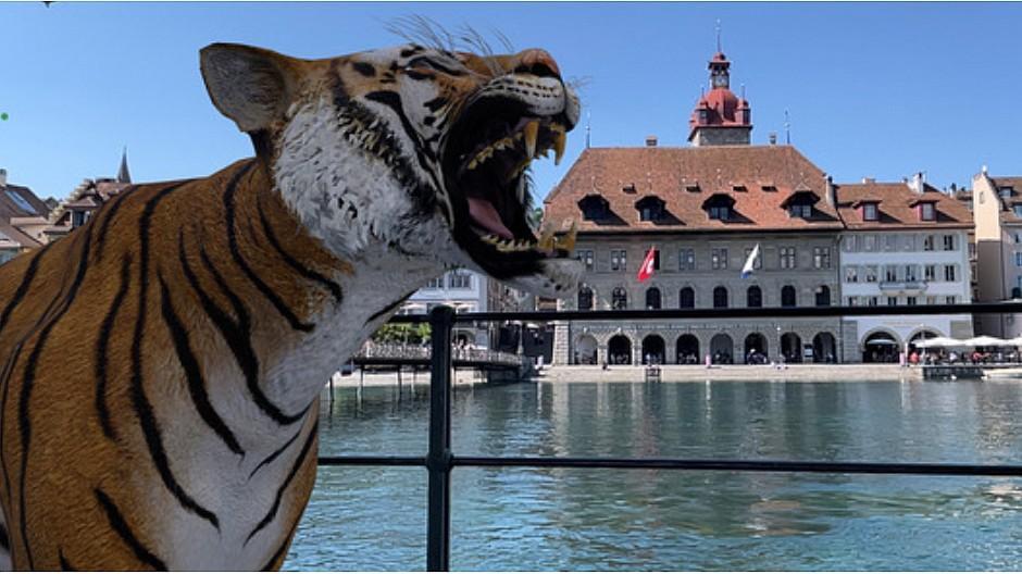 AR-Ausstellung: Wenn mitten in der Stadt ein Tiger brüllt