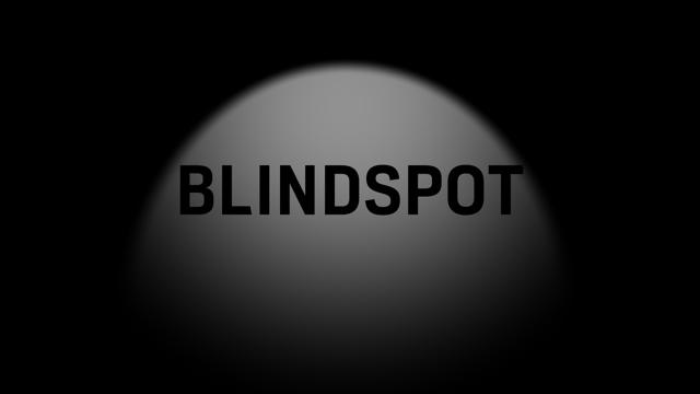 Logo_Blindspot