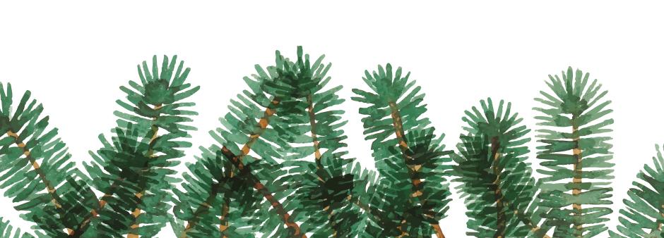 bäumeunten_2